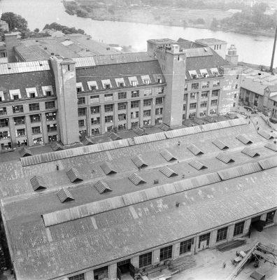 Blick vom Turm des Behrensbaus, Bild 3; Foto, 1952
