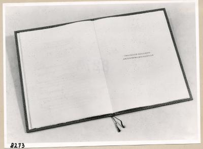 Album Geburtstag Walter Ulbricht, 7. Seite; Foto, 1953
