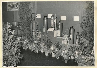 Arbeitsschutzausstellung im HF-Speisesaal 3, Foto 1954