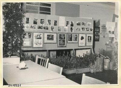 Arbeitsschutzausstellung im HF-Speisesaal 5, Foto 1954