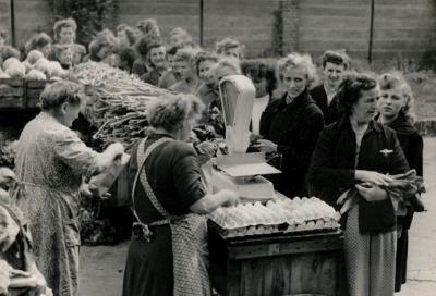 Bauernmarkt (Afo-Gelände) [