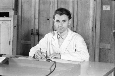 Mitarbeiter am Schreibtisch, Foto 1955