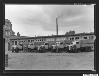LKW-Fuhrpark des WF mit LKW-Fahrern und Beifahrern, Foto 1960