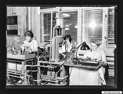 Arbeiterinnen an Einzel-Arbeitsplätzen, Foto 1965
