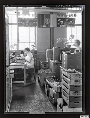 Gütekontrolleure bei der Arbeit 3, Foto 1968