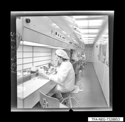 Laborarbeiterin, Foto Januar 1973, und Zeitzeugeninterview, 2019