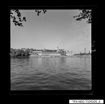 Wasseransicht des WF-Geländes, Bild 3, Foto 1974