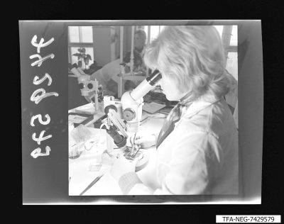 Arbeiterin bei der Feinmontage, Foto 1974