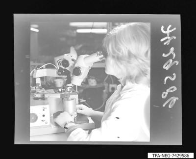 Arbeiterin mit Sichtgerät, Foto 1974