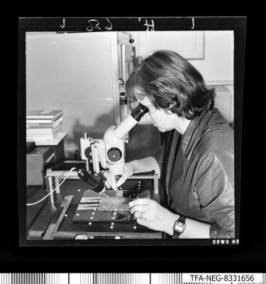 Paf techn. Herstellung, Frau am Arbeitsplatz, Foto 2, Foto1983